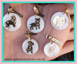COLAR PET BORDER COLLIE FOLHEADO A OURO 18K